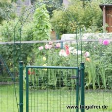 Rosenbogen für Gartentore