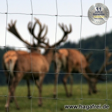 W-Forstprofil Wildschutzzaunset 100-9-15 1,00X50m