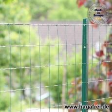 Zaunset Gitterzaun T-Pfosten grün Maschung 100X100X2,2mm