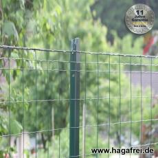 Zaunset Deko-Gitterzaun WEND grün 100X50X2,5mm T-Pfosten
